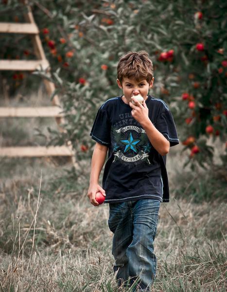 Мальчик грызет яблоко